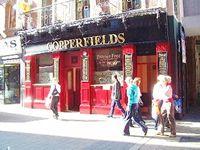 copperfields(1)